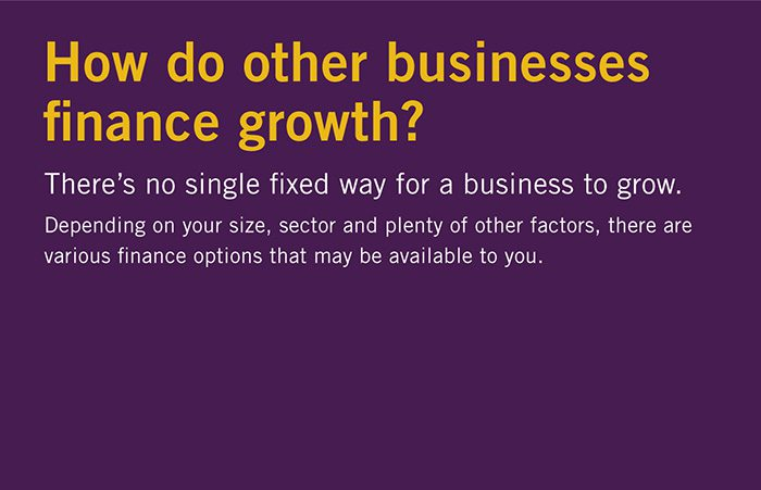 How do other businesses finance growth?