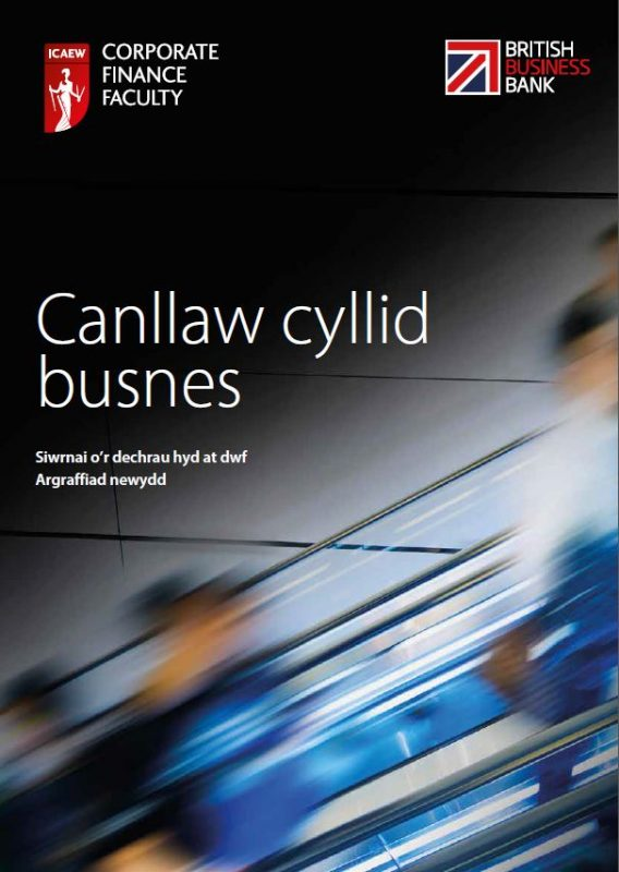 The business finance guide - Welsh version - guide to finance options