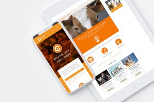 A iPad and smartphone displaying the Comesto website