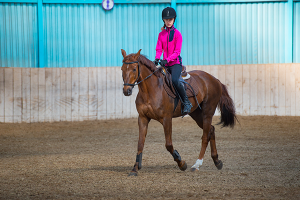Girl riding bay horse performing dressage test in equestrian competition